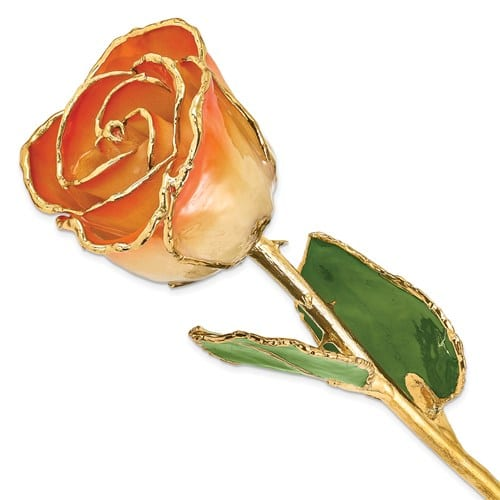 Yellow gold plated rose