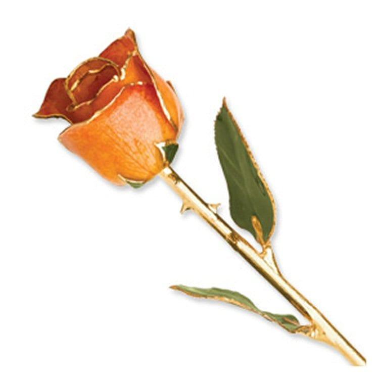 Natural Orange Rose