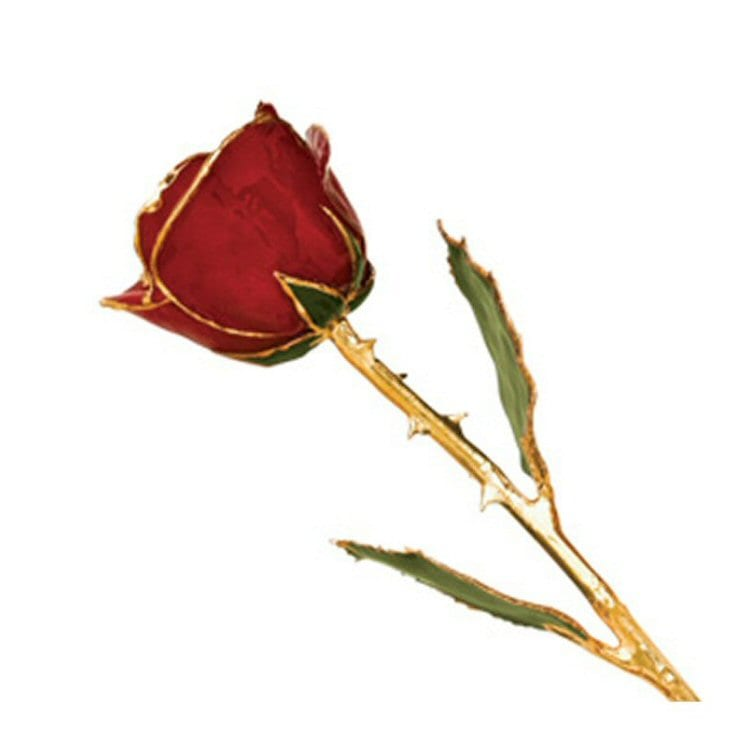 Red Rose plated with 24 Karat yellow gold
