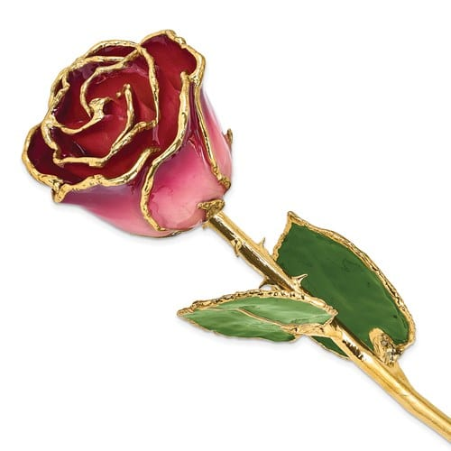 Pink gold plated rose