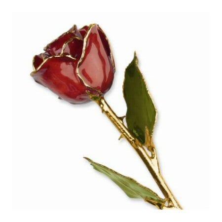 Cinnamon Pearl Rose